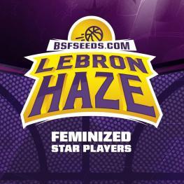 LEBRON HAZE (x2)