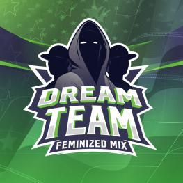 DREAM TEAM FEMINIZED MIX (x12)